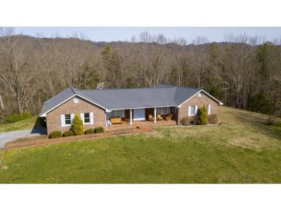 Rogersville Single Family Home For Sale: 131&135 Cedar Valley Rd