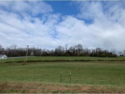 Washington-Tn County Residential Lots & Land For Sale: Knob Creek