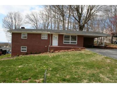Kingsport Single Family Home For Sale: 304 Harkleroad St