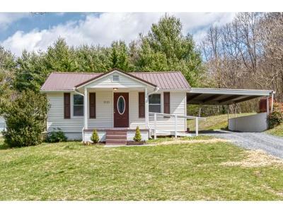 Johnson City Single Family Home For Sale: 2121 David Miller Rd