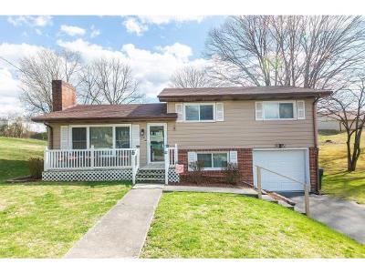Bristol VA Single Family Home For Sale: $119,900