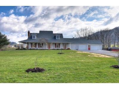 Elizabethton Single Family Home For Sale: 1019 Winters Private Drive