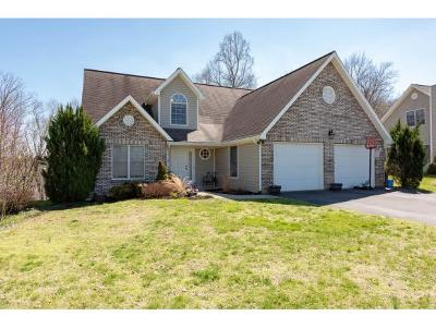 Kingsport Single Family Home For Sale: 4036 Lake Forest Drive