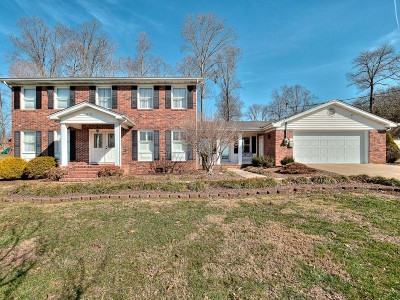 Bristol Single Family Home For Sale: 213 Amity Dr