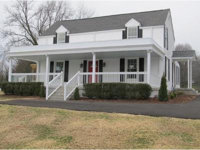 Johnson City Single Family Home For Sale: 207 E.gilmer Park