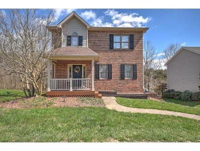 Kingsport Single Family Home For Sale: 521 Willowbrook Trace