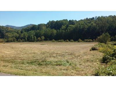 Greene County Residential Lots & Land For Sale: Little Meadow Creek Road