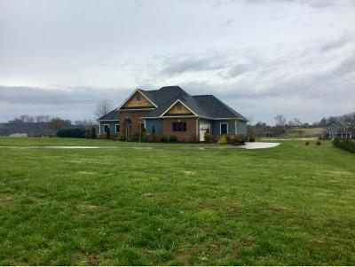 Greeneville Single Family Home For Sale: 66 Belle Arden Drive