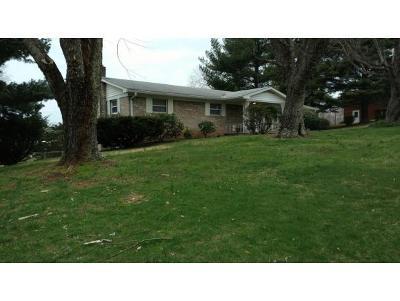 Hamblen County Single Family Home For Sale: 413 Milburn Street