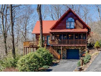 Single Family Home For Sale: 351 Ivy Wood Lane
