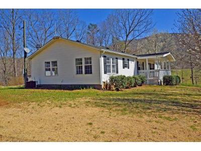 Elizabethton Single Family Home For Sale: 257 Estep Hollow Road