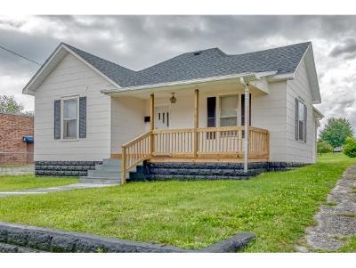 Bristol VA Single Family Home For Sale: $59,900