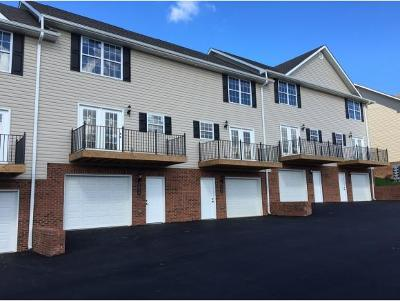 Johnson City Condo/Townhouse For Sale: 634 Grays Pointe Court #23