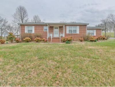 Bluff City Single Family Home For Sale: 310 Whitehead Rd