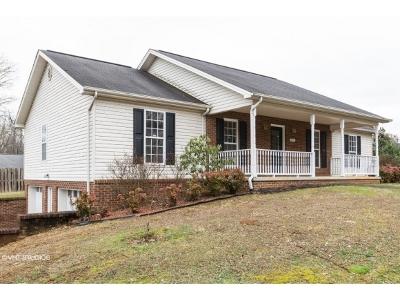 Johnson City Single Family Home For Sale: 106 Helen Court