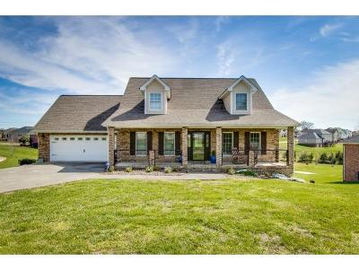 Kingsport Single Family Home For Sale: 3404 Bailey Ranch Rd.