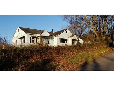 Johnson City Single Family Home For Sale: 123 Hankal Rd