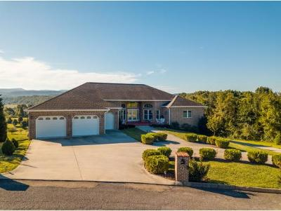 Hawkins County Single Family Home For Sale: 231 Roanoke Drive