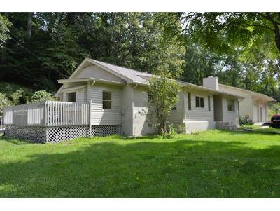 Roan Mountain TN Single Family Home For Sale: $136,000