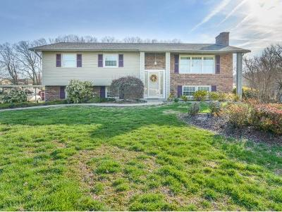 Kingsport Single Family Home For Sale: 424 S. Valley View Circle