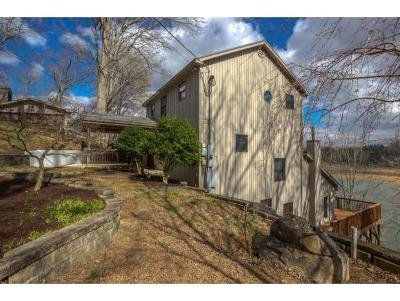 Blountville Single Family Home For Sale: 340 Hamilton Drive