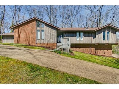 Kingsport Single Family Home For Sale: 3704 Blackheath Rd.
