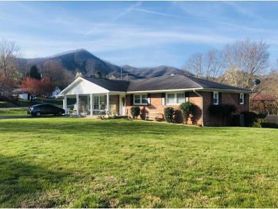 Elizabethton Single Family Home For Sale: 103 Hatfield Dr