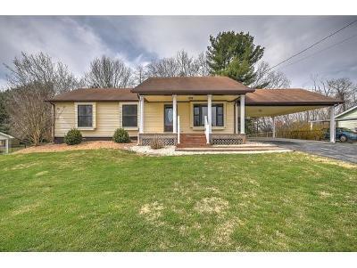 Damascus, Bristol, Bristol Va City Single Family Home For Sale: 20030 Orion Ave