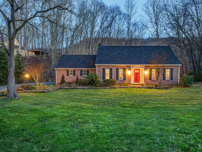 Kingsport Single Family Home For Sale: 828 Ridgefields Rd