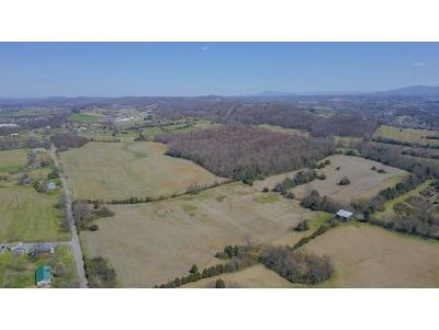 Washington-Tn County Residential Lots & Land For Sale: TBD Paynetown Rd