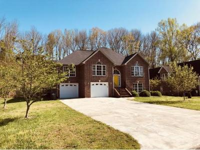Kingsport Single Family Home For Sale: 1009 Chesapeake Ct