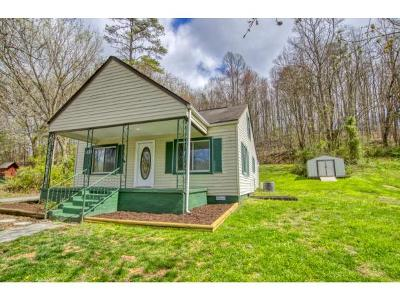 Kingsport Single Family Home For Sale: 257 Shipp Springs Rd