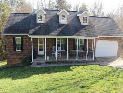 Kingsport Single Family Home For Sale: 267 Dancy Lane