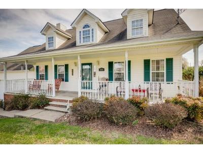 Blountville Single Family Home For Sale: 131 Sanders St