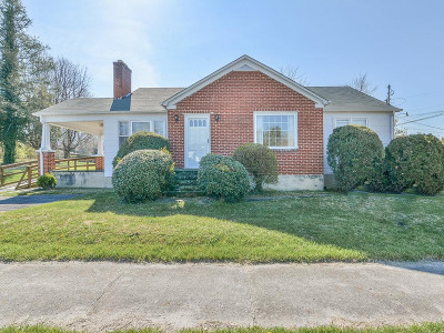 Bristol Single Family Home For Sale: 401 Valley View Drive
