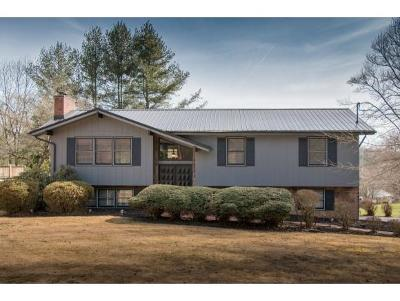 Bristol Single Family Home For Sale: 516 Brookwood Drive