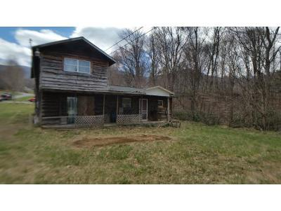 Roan Mountain TN Single Family Home For Sale: $69,900