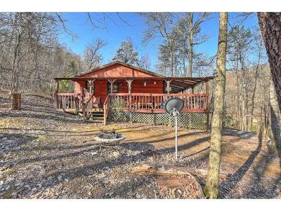 Log Homes for Sale in East Tennessee under $100,000