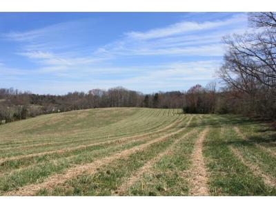 Greene County Residential Lots & Land For Sale: 1290 Martin Road