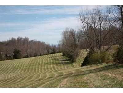 Greene County Residential Lots & Land For Sale: 1330 Martin Road