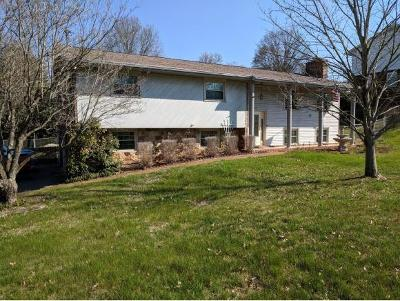 Kingsport Single Family Home For Sale: 1128 Meadow Lane