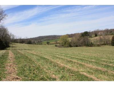 Greene County Residential Lots & Land For Sale: 1370 Martin Road
