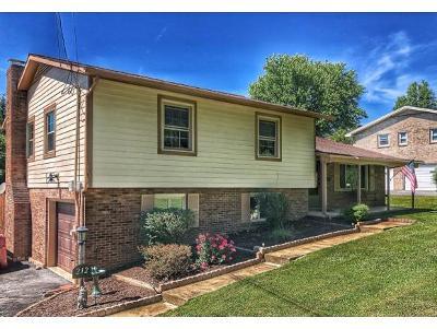 Johnson City, Watauga, Johmson City, Johnosn City, Johnsn City, Johnson, Johnson Ciity, Johnson Citry, Johnson Ctiy Single Family Home For Sale: 212 Hemlock Lane