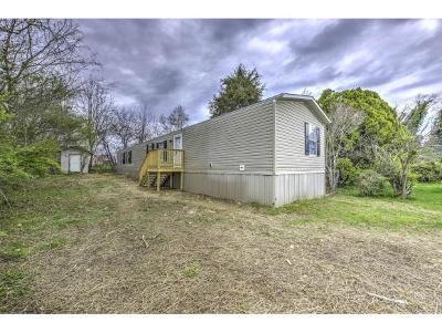 Hamblen County Single Family Home For Sale: 8025 John Henry Road