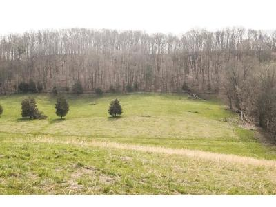 Washington-Tn County Residential Lots & Land For Sale: TBD Telford Road