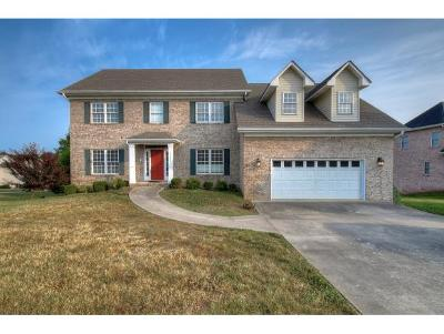 Johnson City Single Family Home For Sale: 1408 Lake Ridge Square