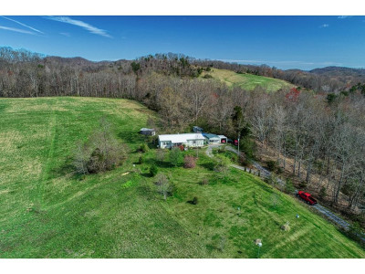 Rogersville Single Family Home For Sale: 139 Marlowe Road