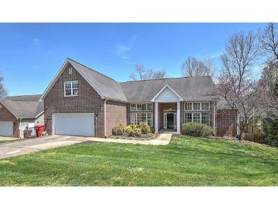 Johnson City, Watauga, Johmson City, Johnosn City, Johnsn City, Johnson, Johnson Ciity, Johnson Citry, Johnson Ctiy Single Family Home For Sale: 617 Glen Oaks Pl.