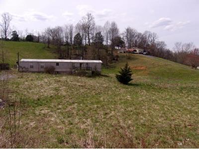 Elizabethton Single Family Home For Sale: 210 Cash Hollow Road