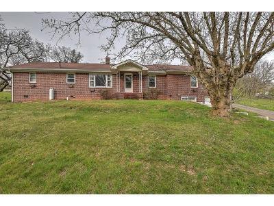 Single Family Home For Sale: 2804 Chestnut Lane